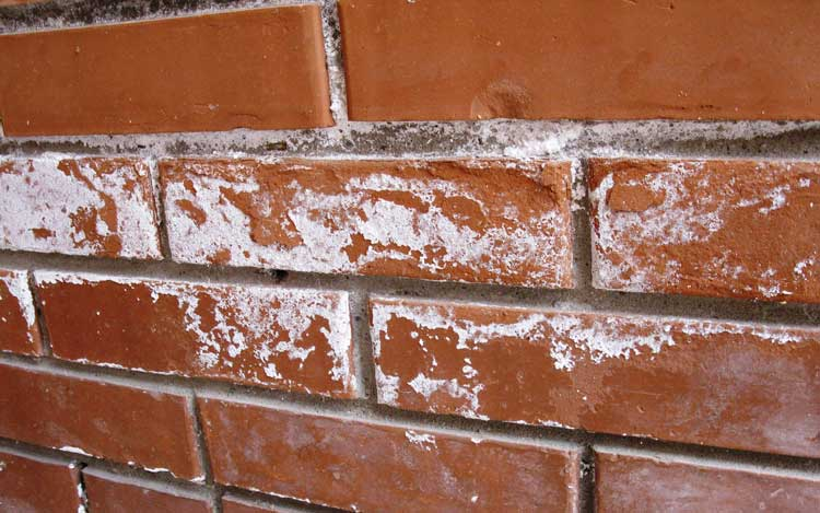 Wickes Facing Bricks